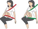ilustracion cporrecta posicion del cinturon en mujeres embaraxadas